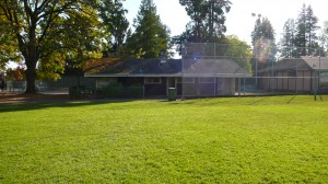 Elm Park field house