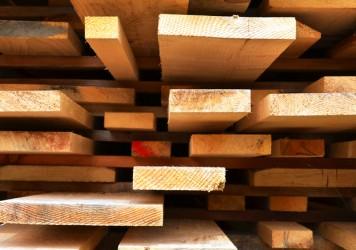 lumber-crop