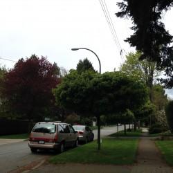 Square-Kerrisdale-2